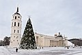 Vilnius Cathedral Square in winter (2014).jpg