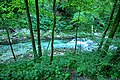 Vintgar Gorge (35423014430).jpg