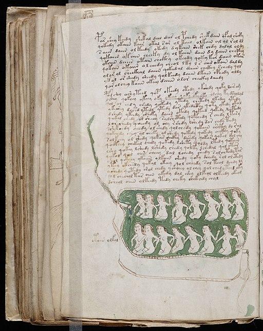 Voynich Manuscript (148)