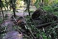 Vysoky Zamok Lviv-140.JPG