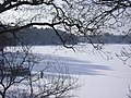 WVH Rainbow Lake.jpg