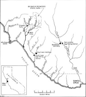 San Lorenzo River - 1954 Map of Waddell Creek, Scott Creek and San Lorenzo River