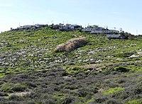 Wadi-Makukh-Mitzpe-Dani-503.jpg