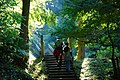 Walking toward Nunobiki waterfall in Aira, Kagoshima, -20 Nov. 2010 a.jpg