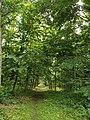Wandelpad in Provinciaal Domein Vrieselhof 3.jpg