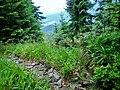 Wanderweg mit Ausblick - panoramio.jpg