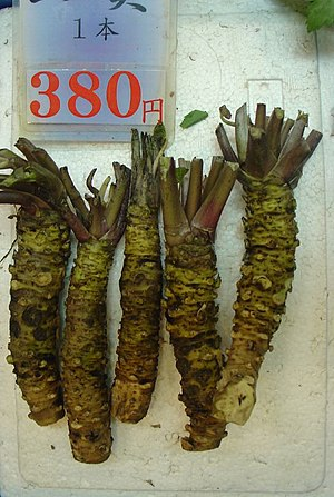 Fresh wasabi root for sale at Nishiki Market i...