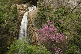 Waterfall, Tbilisi Botanical Garden, Georgia