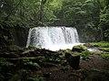 Waterfall Oirase Gorge - panoramio.jpg
