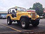 Wdog Jeep Wrangler Yellow.jpg