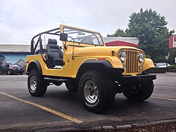 Wdog Jeep Wrangler Yellow.jpg