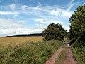 Wheatley Wood Track from Woolley Edge Lane - geograph.org.uk - 485009.jpg