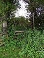 Wooded path - geograph.org.uk - 2550543.jpg