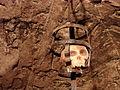 Wooden Skull Model in Dungeons - Prague Castle - Prague - Czech Republic.jpg