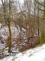 Woods near Clocaenog. - geograph.org.uk - 136392.jpg