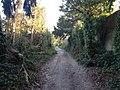 Worthing, UK - panoramio (111).jpg