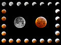 Write adam - Total Lunar Eclipse, December 21 2010 (by).jpg