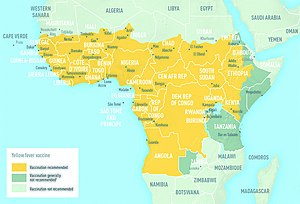 English: Yellow fever map CDC