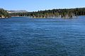 Yellowstone River 05.JPG