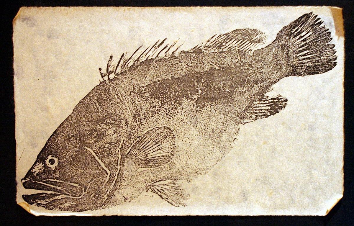 gyotaku wikipedia