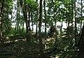Zehdenick Germaniastich ruins.jpg