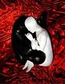 Zentai yin yang by dvs.jpg