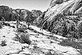 Zion National Park (15141413630).jpg