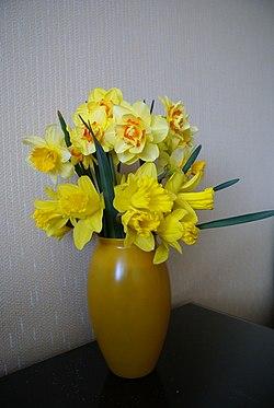 Żółty bukiet.   JPG