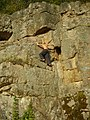Берег Южного Буга(скала в Шершнях) - panoramio.jpg