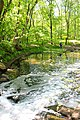 Водопад в Трикратском лесу.jpg
