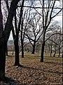 В парке - panoramio (25).jpg