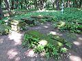 Кладбище - panoramio (12).jpg