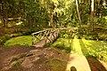Монрепо Берёзовый мостик в парке.jpg
