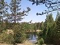 Озеро - panoramio (28).jpg