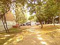 Осень - panoramio (13).jpg