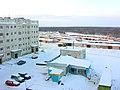 Пангоды с высоты многоэтажки - panoramio - Oleg Seliverstov (2).jpg