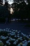 Парк имени Горького в Москве. Фото 54.jpg
