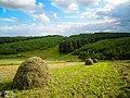Пейзаж на околиці села Жолобки.jpeg