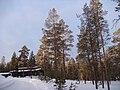 Последнее утро в Лапландии - panoramio.jpg