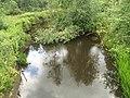 Река Пяля 3.jpg