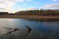 Река Урал осенью - panoramio (2).jpg