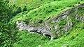 """Стара Планина-околностите на хижа""""Рай"""" - panoramio (11).jpg"""