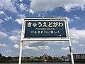 きゅうえどがわ (50335817913).jpg