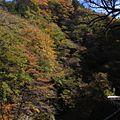 中津峡-紅葉-07 - panoramio.jpg