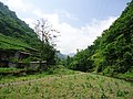 大关县寿山乡益珠村 - panoramio (1).jpg