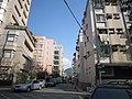 天母景點2010-02 - panoramio - susan curry (16).jpg