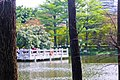 广州丽江花园Scenery in Guangzhou, China - panoramio (3).jpg