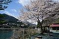 村のえき - panoramio.jpg