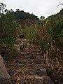 残存的石阶 - Remaining Steps - 2014.11 - panoramio.jpg