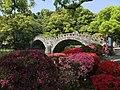 諫早公園の諫早眼鏡橋とくじら橋その2 - panoramio.jpg